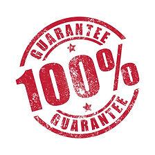 100 percent guarantee seal.jpg