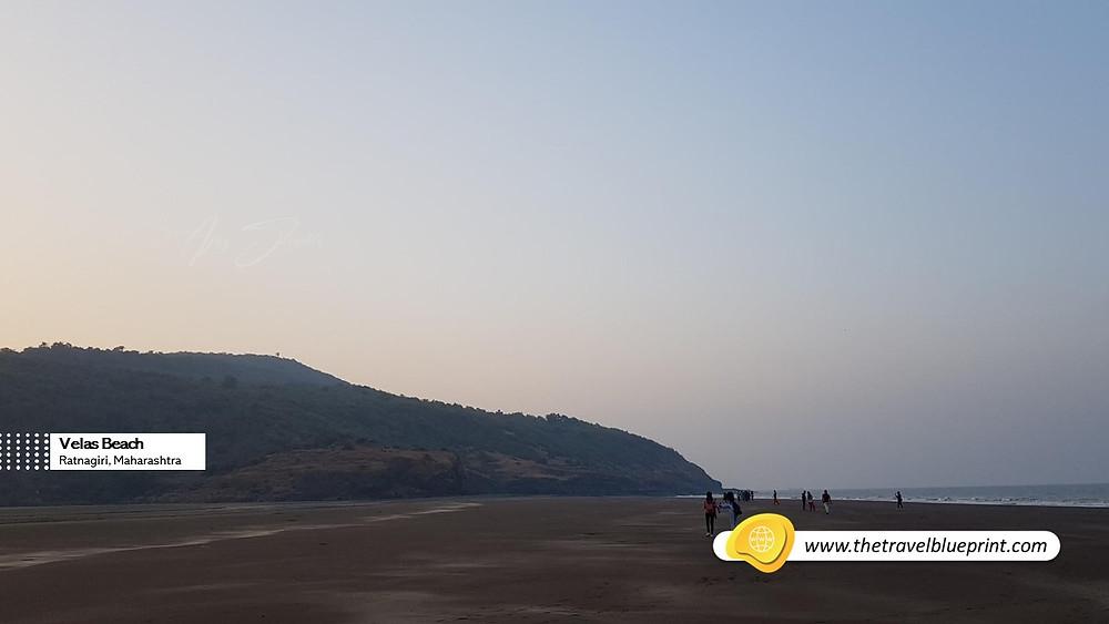 Velas Beach, Ratnagiri, Maharashtra
