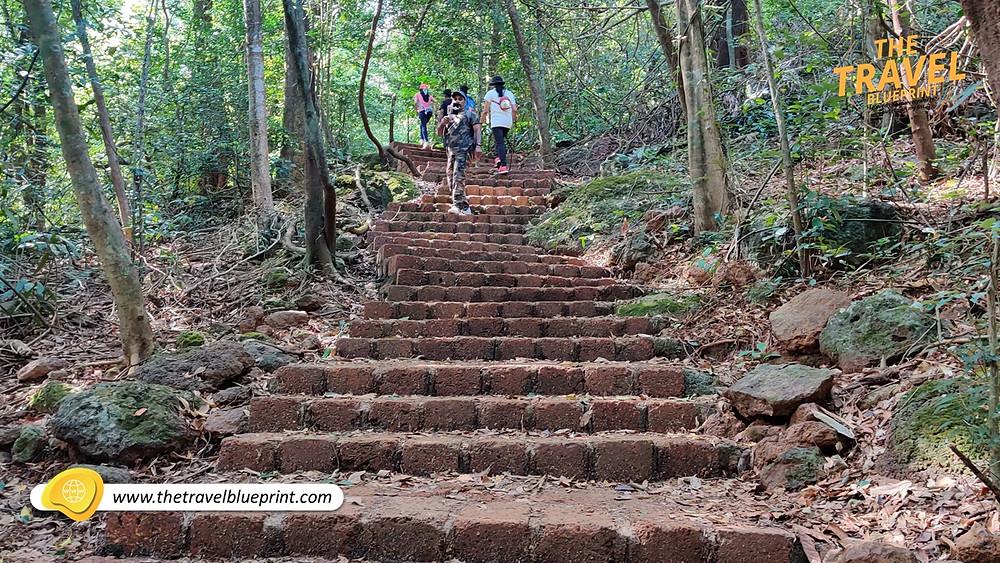 Trekking through dense forest of Vasota