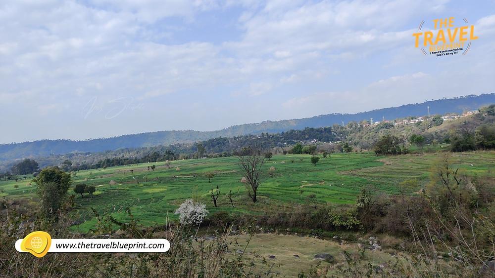 Enroute Palampur to Patankot