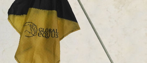 Bandeira 02 cores