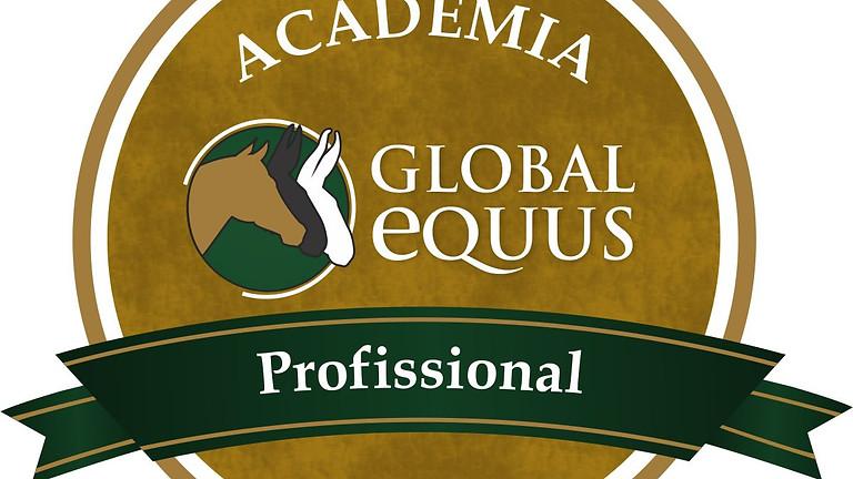 ACADEMIA GLOBAL EQUUS - Módulo 11