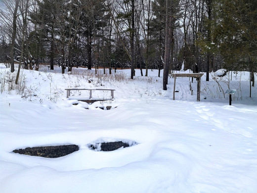 Sentiers Art-et-Nature en hiver
