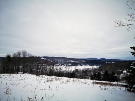 Point de vue sur le lac William