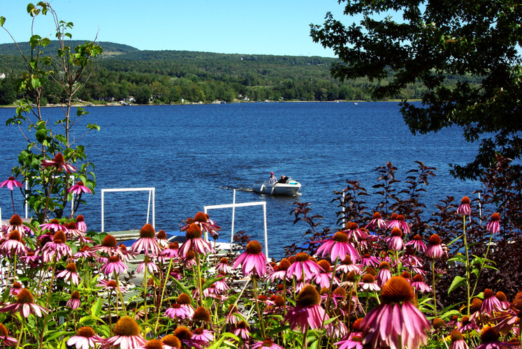 Le lac William en été