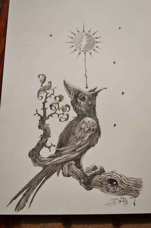 "Original  ""Medicine Crow """