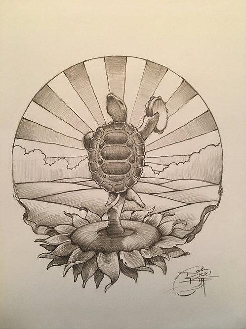 """""""Terrapin Sunflower"""" 420 OG"""