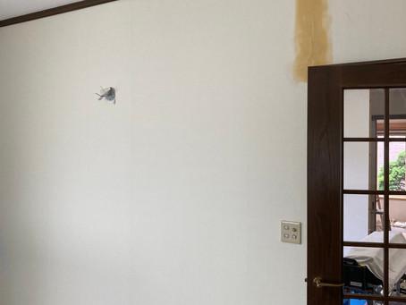 壁紙・クロス張替えは仙台の内装リフォーム専門店インテリア井上にご相談ください。