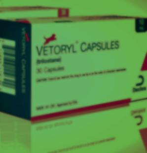 Vetoryl