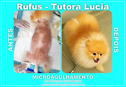 RUFUS ANTES E DEPOIS.png