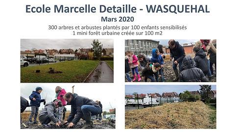 BeeForest - Ecole M. Detaille de Wasquehal