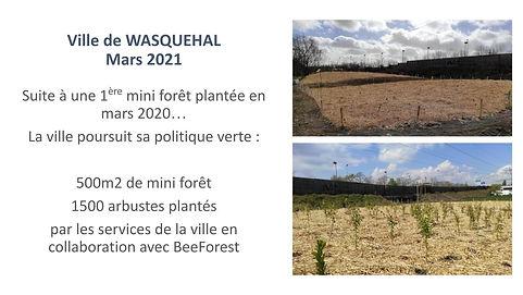 2021-03 WASQUEHAL.pptx.jpg