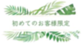 スクリーンショット 2020-03-18 17.25.55.png