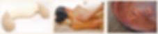 スクリーンショット 2020-03-17 20.19.08.png