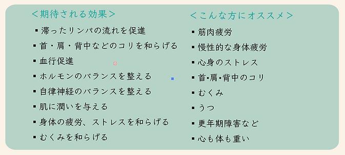 スクリーンショット 2020-03-16 13.49.36.png