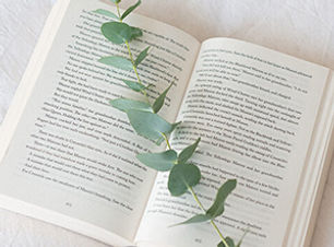 5-livres_BibleUrbaine_610-610x350.jpg