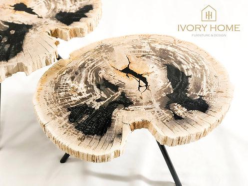 Luxury Petrified Wood Coffee Table Set of 2