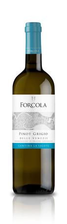 Forcola Pinot Grigio_2020_EN.jpg