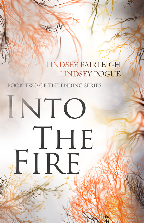 OFFICIAL In The Fire Book Cover High Res