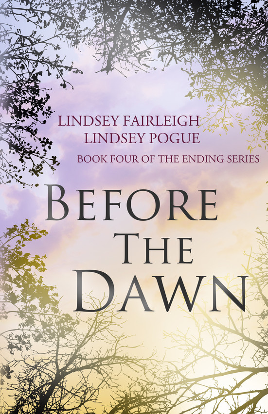 Before The Dawn Book Cover