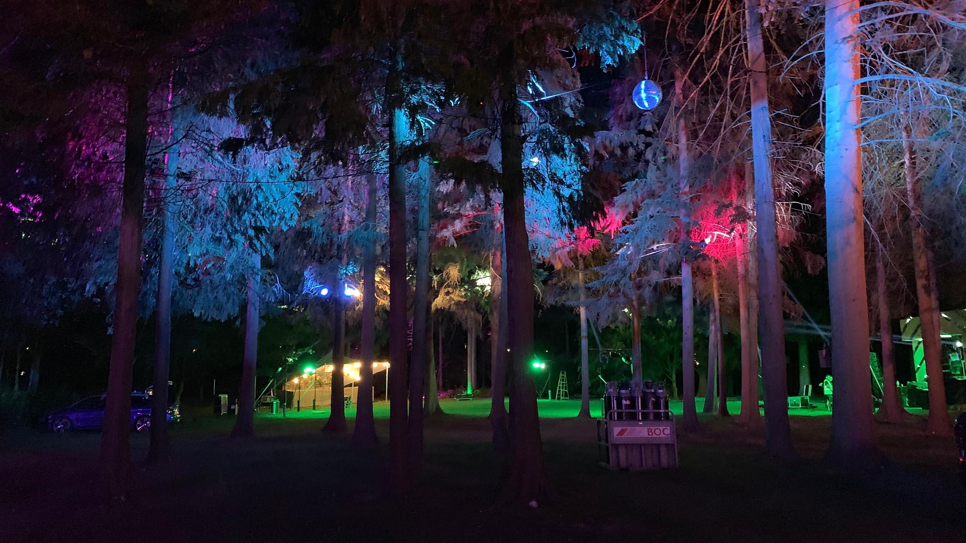 Sundown Festival 2019 - Tree Lighting