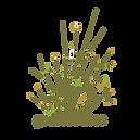 Grassroutes.png