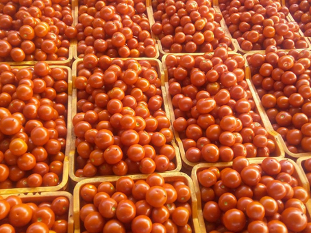 ACTing Fast:Social capital enables tomato farmers to sell produce during Covid-19 lockdown