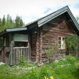 Vacker gammal stuga mitt i skogen