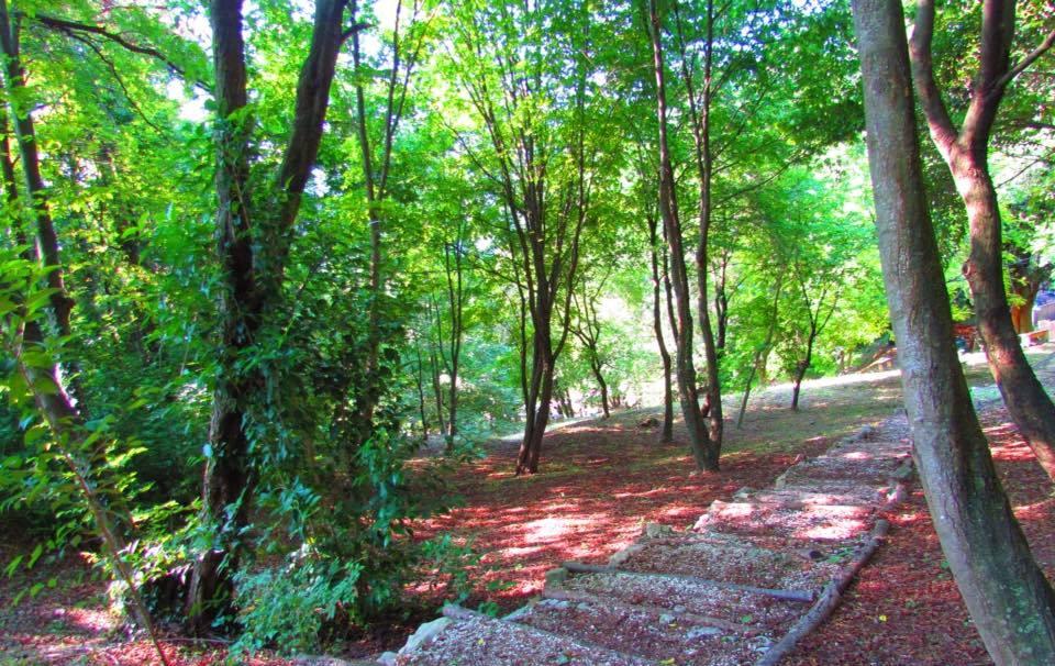 gradini sulla collina dell'ashram