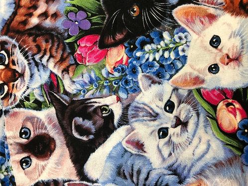 MASK (Kitty Kats)