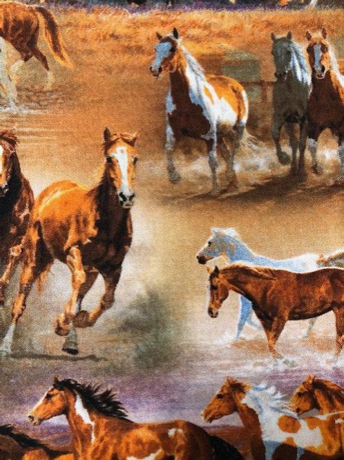 MASK (Wild Horses)