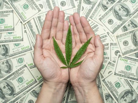 Cannabisblüten- und Marihuana-Handel in großem Stil: 2 Jahre Haft?