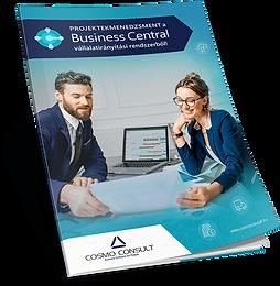 BusinessCentral-Projektmenedzsment-650px