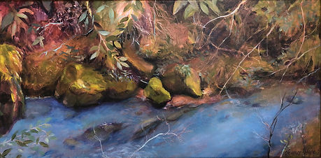 Judy Chance Hope,  North Fork Big River Study