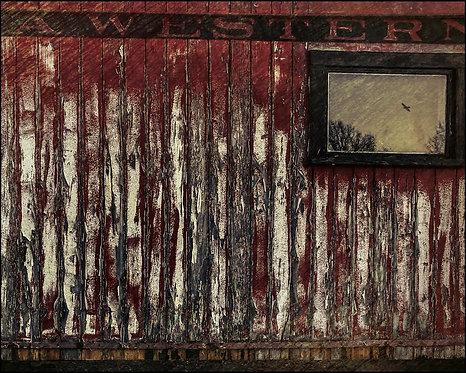 Steve Eberhard, The Last Window