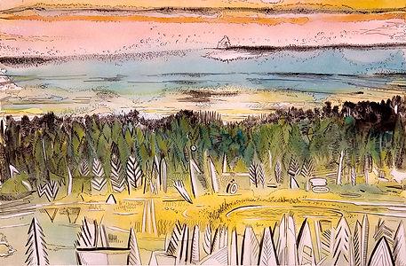 Linda MacDonald,  Strange Forest