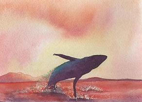 jumping whale-02.jpg