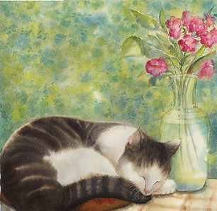 Ann Maglinte,  Cat Nap