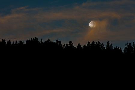 June Ruckman,  Setting Moon
