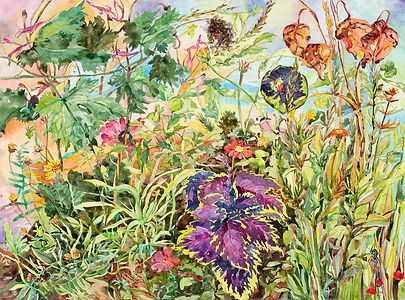 Linda MacDonald, Sunflower and Coleus