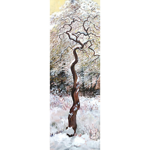 Judy Hope,  Manzanita in the Snow