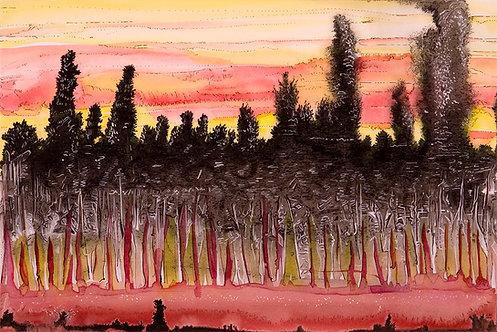 Linda MacDonald, Heat In The Woods