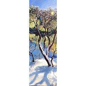 Judy Chance Hope Manzanita on a Snowy Morning