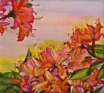 Sandy Strong, Wild Azaleas