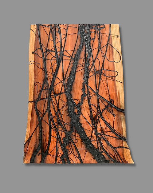 Jonah Ward, Burnt Panel No. 120