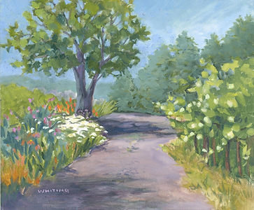 Lynne Whiting Robertson Parducci Gardens