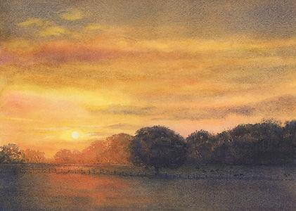 Ann Maglinte, English Oak, Follow the Path Looking from Sherwood Valley t
