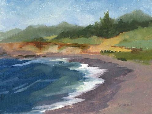 Lynne Whiting Robertson Mackerricher Beach