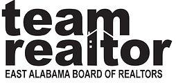 Team Realtor.jpg