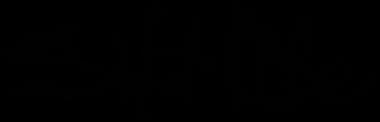 salt-life-logo-png-original.png